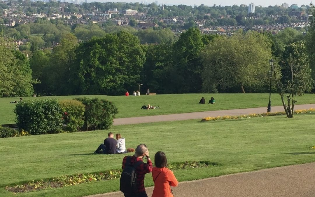Green spaces and biodiversity offsetting