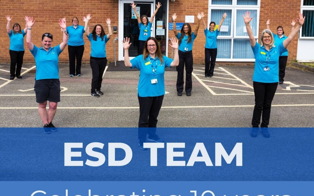 We're celebrating 10 years of our ESD team